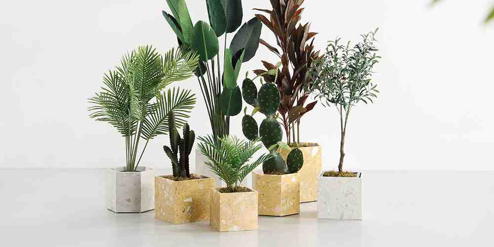 Palm Springs Square Plant Holder from United Strangers